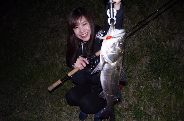 新しいリール「スコーピオンdc」でシーバス釣りをしてきました?✨