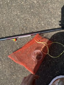 河津でマス釣り
