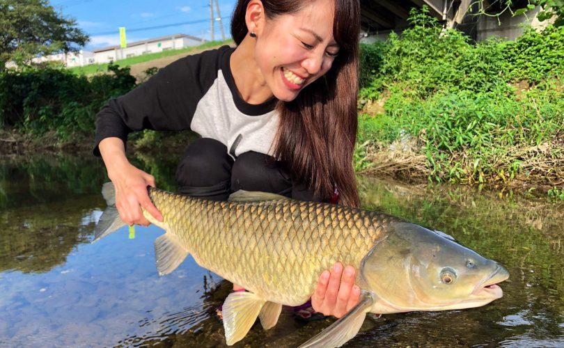 はじめましての魚「ソウギョ」を釣りに行ってきました!