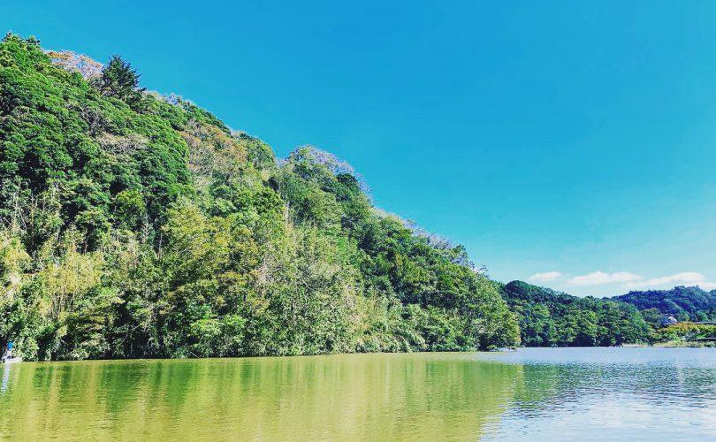 台風後の水質はいかに?2か月ぶりの亀山湖へ!