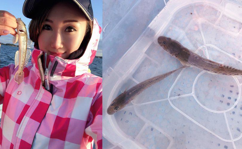 冬の風物詩?!ハゼ釣りに行ってきました