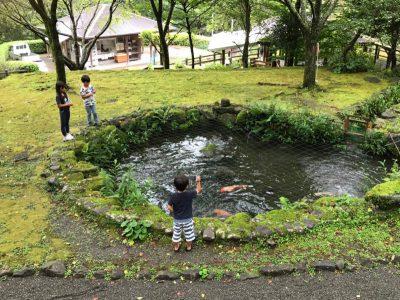 画像:tomomi20200901-7