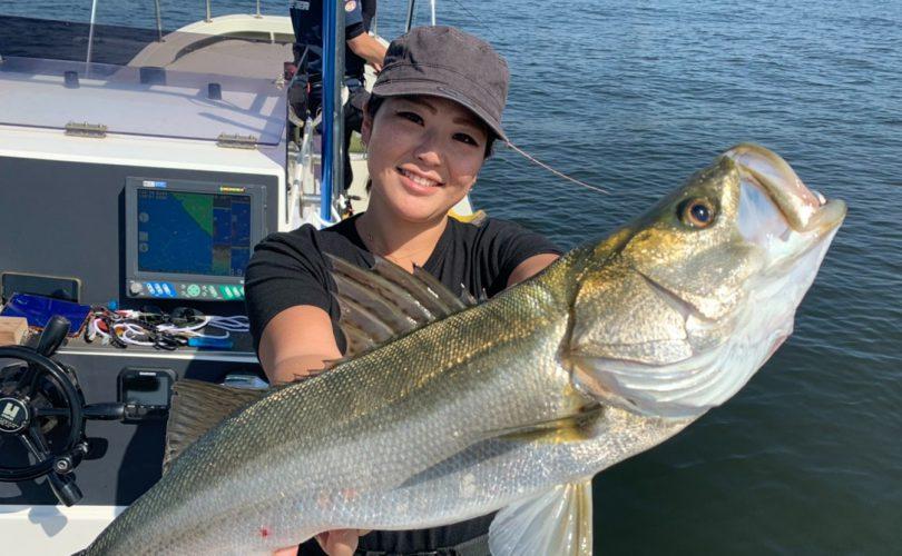 シーバスハイシーズンの東京湾で、釣り人スイッチON!?🎣