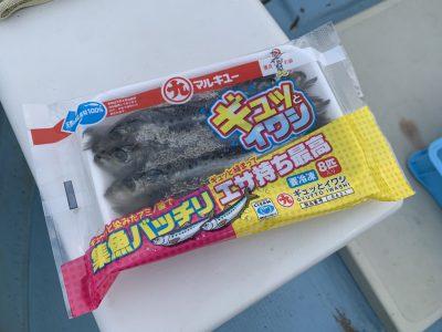 画像:satsuki20201009-8