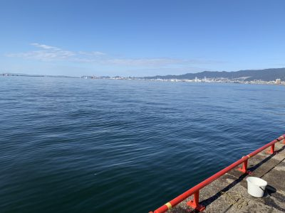 画像:yuki20201112-3