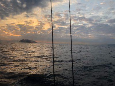 画像:ashika20201212-2