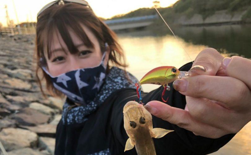 ティップランでアオリイカ釣り等♪エリカの『2020年釣りの思い出ベスト3』