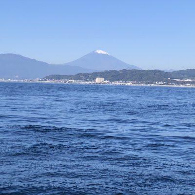 画像:yuri20201130-1