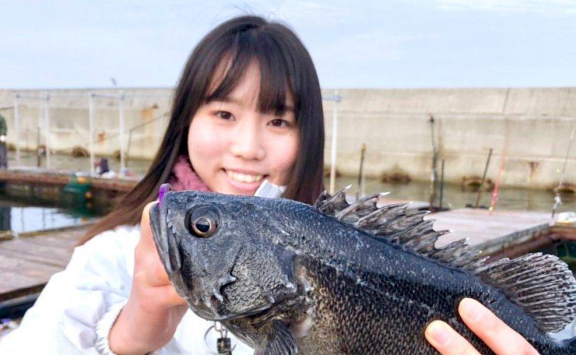 海上釣り堀岬で父と釣り対決!!クロソイとトラフグGet🎣✨